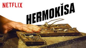 Hermokisa (2019)