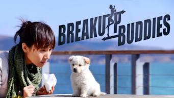 Breakup Buddies (2014)