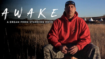 AWAKE, A Dream from Standing Rock (2017)